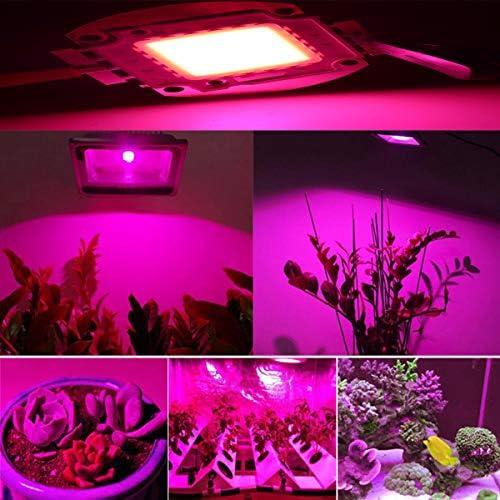 Tesfish 100w Vollem Spektrum Led Grow Chip Licht Pflanzenlampe Broad 380nm 840nm Für Diy Zimmerpflanzen Gemüse Und Blumen Lampen Küche Haushalt