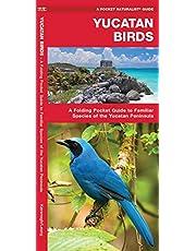 Yucatan Birds: A Folding Pocket Guide to Familiar Species of the Yucatan Peninsula