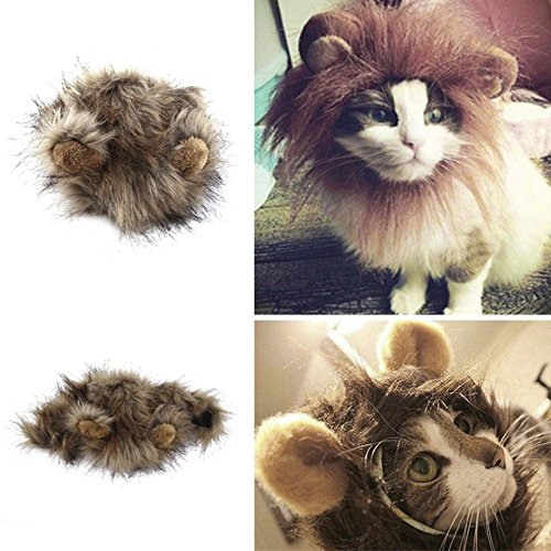 2017 Funny Cute Pet Costume Cosplay Lion Mane Wig Cap Hat for Cat Halloween Xmas Clothes Fancy Dress with Ears Autumn (Toothless Costume For Cat)