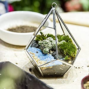 5.3 inches Silver Handmade Wall Hanging Geometric Glass Terrarium Window Sill Balcony Succulent plants Planter Small Indoor Decoration Flower Pot Vase Centerpiece for Wedding Coffee Table (No Plants) 4