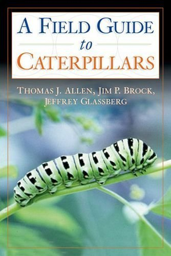 2005 Caterpillar - Caterpillars in the Field and Garden: A Field Guide to the Butterfly Caterpillars of North America (Butterflies Through Binoculars) by Thomas J. Allen (2005-06-02)