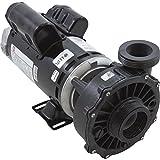 Waterway 3421621-10 4HP 230V 2-Speed 48 Frame Hi-Flo Spa Pump
