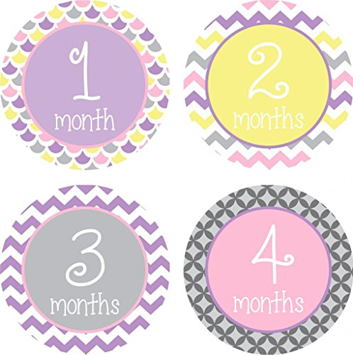 Little LillyBug Designs - Monthly Baby Stickers - Girl - Pink - Purple - Yellow Sampler