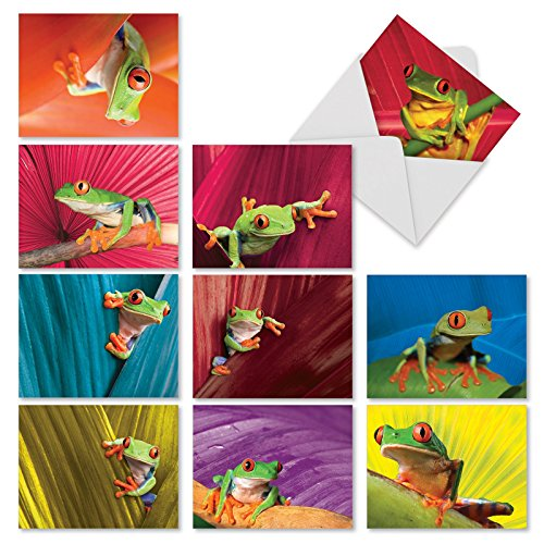 10 'Frog Days' Note Cards with Envelopes, Assorted Blank Greeting Cards Featuring Frogs, All-Occasion Cards for Birthday, Thank You, Congratulations, Stationery Note Cards 4 x 5.12 inch M10023BK]()