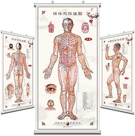 Mapa de acupuntos de medicina china, mapa de acupuntos del meridiano humano, tabla de pared grande, museo de la salud, pintura de propaganda, póster de acupuntura de acupunción de masaje: Amazon.es: Juguetes