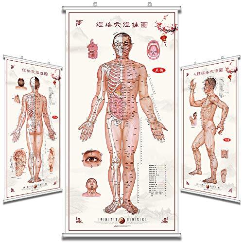 漢方ツボマップ人間の子午線ツボマップ大きな壁図健康博物館宣伝宣伝絵画灸鍼マッサージポスター   B07MCJKSC4