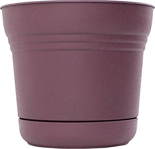 bloem-sp1256-saturn-planter-12-inch-exotica