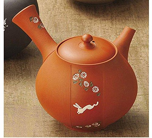 Japanese ceramic Tokoname ware. Kyusu teapot. 260cc