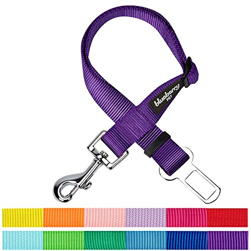 Classic Look Classic Belt (Blueberry Pet 12 Colors Classic Dog Seat Belt Tether for Dogs Cats, Dark Orchid, Durable Safety Car Vehicle Seatbelts Leads Use with)