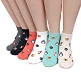 Intype Japaness Character Miyazaki Totoro Socks Collection (Low cut 6pairs (JD))