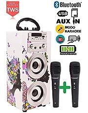 DYNASONIC - Altavoz Bluetooth Portátil con Karaoke   Radio FM y Lector USB SD (Modelo 8, 2 Micrófonos)