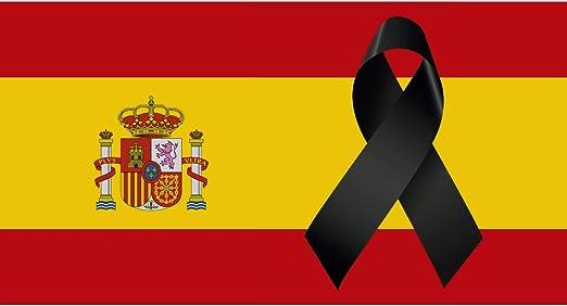 Oedim Bandera de España con Crespón | Medidas 85x150cm | Reforzada y con Pespuntes | Bandera de España con Crespón y 4 Ojales Metálicos | Resistente al Agua: Amazon.es: Hogar