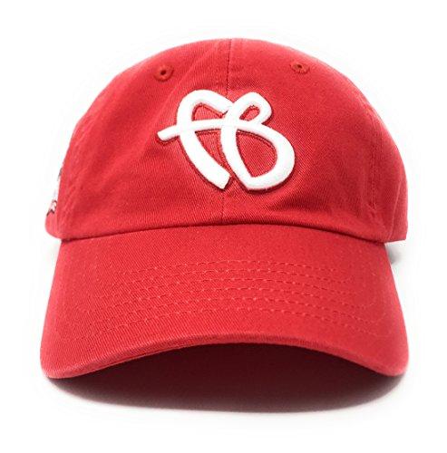 "7ed181245c2 FUBU Men s ""FB"" Logo 25th Anniversary Dad Snapback Hat O S Red"
