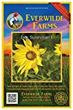Everwilde Farms - 150 Tall Sunflower Native Wildflower Seeds - Gold Vault Jumbo Seed Packet