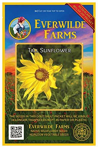 - Everwilde Farms - 150 Tall Sunflower Native Wildflower Seeds - Gold Vault Jumbo Seed Packet