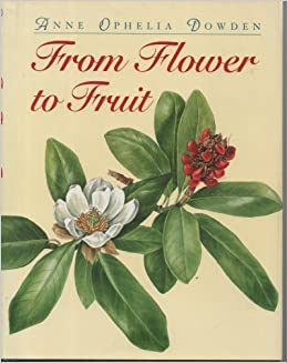 ((NEW)) From Flower To Fruit. Tsuyoshi Watch making supports poetic video Estado Hotel