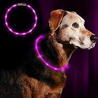 Anicoll LED Leuchthalsband Hunde Halsband - Anicoll USB wiederaufladbar - Längenverstellbarer Haustier Sicherheit Kragen...
