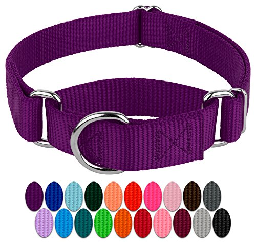 Country Brook Design - Martingale Heavyduty Nylon Dog Collar (Various Sizes & Colors) (Small, 3/4 Inch Wide, Purple)