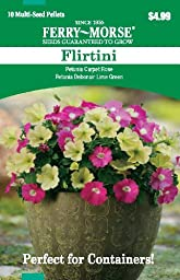 Ferry Morse 2179 Conatiner Combinations, Petunia-Flirtini