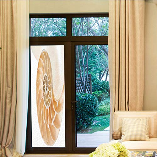 Nautilus Outdoor Shell - YOLIYANA Non-Toxic Window Film,Sacred Geometrty Decor,for Indoor & Outdoor Window,Nautilus Shell Showing The Chambers in Distance Curves,24''x70''