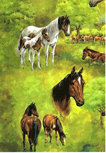 - Horses On Pasture Gift Wrapping Paper -Two 26 In x 6 Ft Sheets