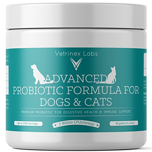 Vetrinex Labs Probiotics for Dogs and Cats with Prebiotic - 3 Billion CFU. 7 Strains - Best Supplement for Relief from Diarrhea, Skin & Yeast Infections, Allergies (Labs Kelp)