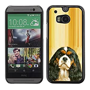 All Phone Most Case / Hard PC Metal piece Shell Slim Cover Protective Case for HTC One M8 Cavalier King Charles Spaniel Puppy