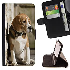 Super Marley Shop - Leather Foilo Wallet Cover Case with Magnetic Closure FOR Apple iPhone 5 5S- Dog Cute Puppy Pet Paws