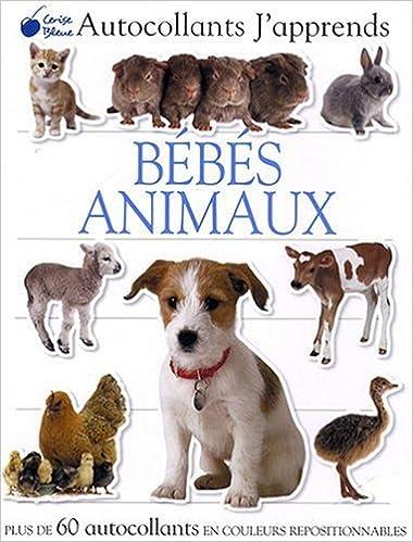 En ligne téléchargement Bébés Animaux (Autocollants J'Apprends) epub, pdf