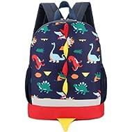 Kid Backpack Boy Preschool with Strap Dinosaur Blue Kindergarten Leash Bookbag