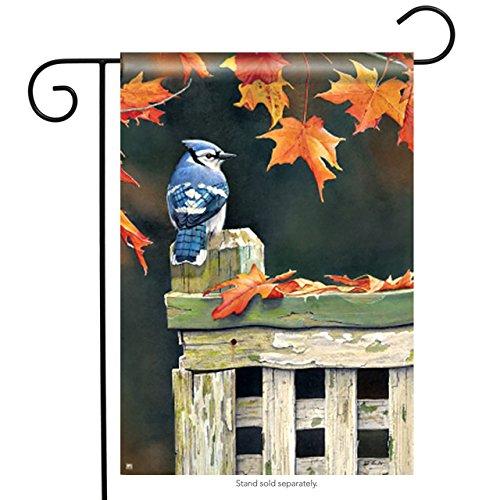 Magnet Works MAIL35971 Autumn Blue Jay Garden Flag