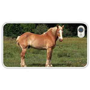 Apple iPhone 4 4S Cases Customized Gifts Breyer horse White Hard PC Case
