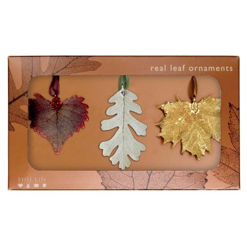 Real Leaf Ornaments, Set of 3 Mixed Metal Ornaments - Cottonwood, Lacy Oak, and Sugar Maple - Ornament Gold Leaf