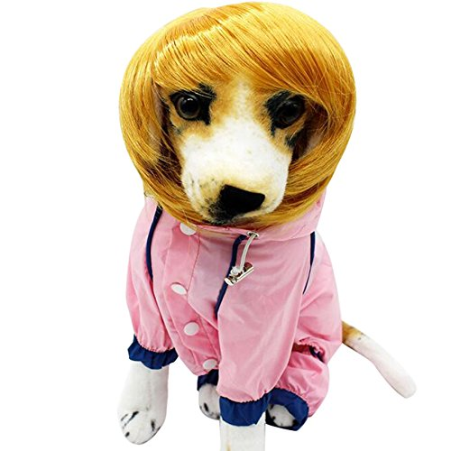 Eranello(TM) Fashionable And Soft Synthetic Hair Blonde Dog Short Straight Wig Hat Cap For Pet - With World Hair Wayne's Hat