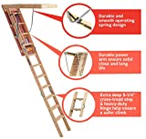 Louisville Ladder CS254P ladders, 7-Foot to