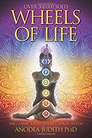Wheels of Life: A User's Guide to the Chakra System (Llewellyn's New Age