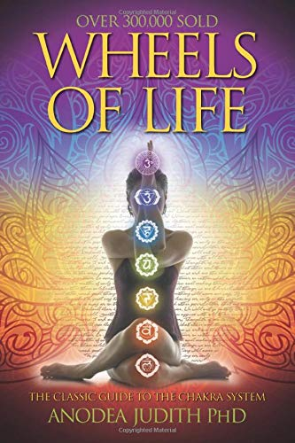 Wheels of Life: A User's Guide to the Chakra System (Llewellyn's New Age Series) reviews