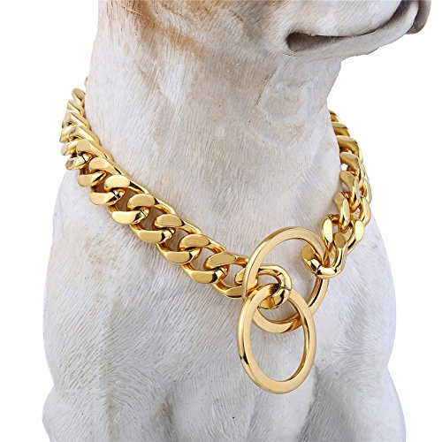 Pet Collars 10mm (Gold Tone Dog Choker Collar, 24