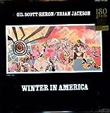 Winter in America (Ogv) [Vinyl]