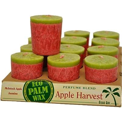 Aloha Bay Votives (12 ct) - Natural Fragrance Blends
