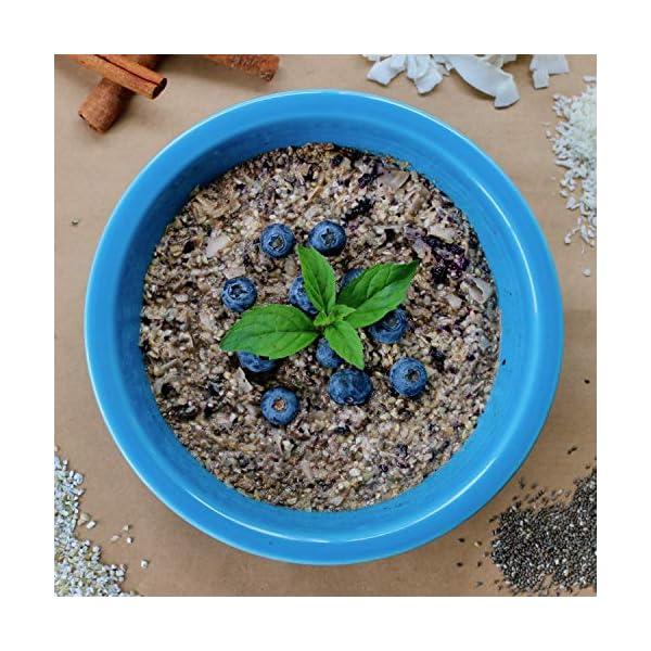 healthers choice blueberry cinnamon