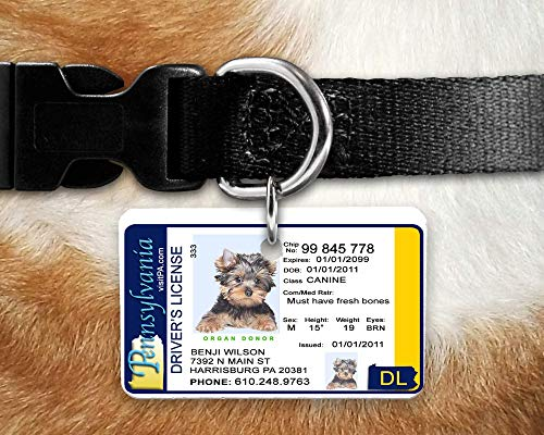 Custom and Personalized PA Pet Identification Tag with a Photo - Inspired by the PA Drivers License