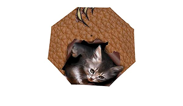 Double Layer Inside Out Folding Umbrella Reverse Inverted Windproof Animal Cat British Shorthair Grey Umbrella Upside Down Umbrellas with C-Shaped Handle for Women and Men