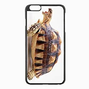 iPhone 6 Plus Black Hardshell Case 5.5inch - shell turtle beautiful background Desin Images Protector Back Cover
