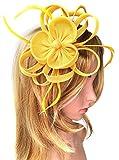 Biruil Women's Fascinator Headband Imitation Sinamay Feather Tea Party Flower Derby (Yellow)