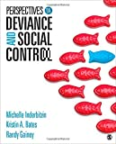 Perspectives on Deviance and Social Control 1st Edition
