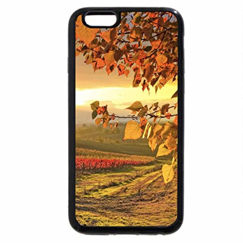 iPhone 6S / iPhone 6 Case (Black) Vineyard in autumn