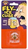 Fly in the Ice Cube