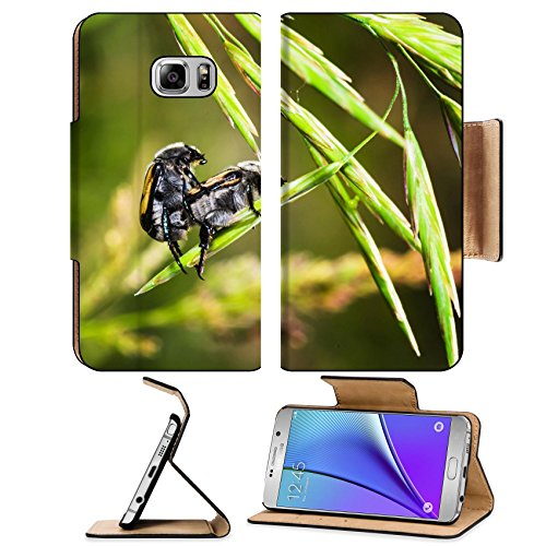 liili-premium-samsung-galaxy-note-5-flip-pu-leather-wallet-case-brown-beetles-on-a-blade-of-grass-on
