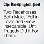 Two Racehorses, Both Male, 'Fell in Love' and Grew Inseparable. Until Tragedy Did it For Them.   Chuck Culpepper